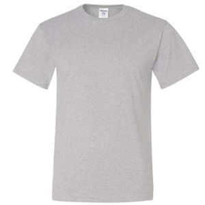 NEW Lot of 5 Gildan Men's Ash Gray T-Shirt Mix S